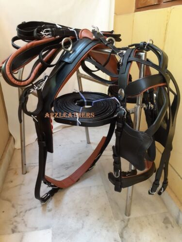 Exclusive Black/Tan color Leather Driving harness for single horse cart