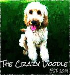 The Crazy Doodle