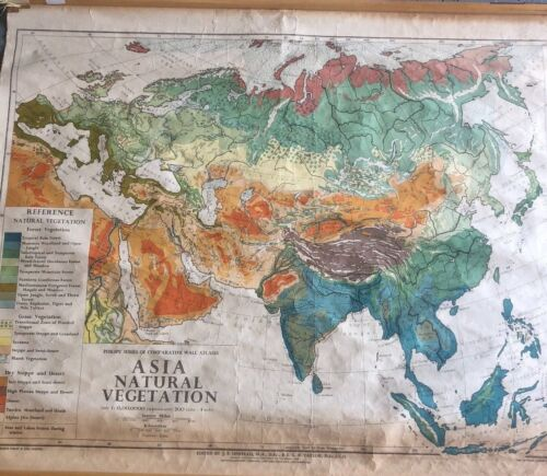 Vintage Pull Down Map 1 Layer Asia Vegetation Vintage, Salvage, Old, Antique.