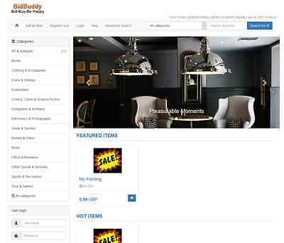 Online Auction Website  Mobile Friendly Responsive Website 2 Monrhs Free Hosting