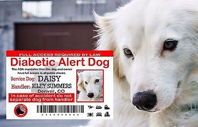 Service Dog Card, ADA Wallet Card Diabetic Alert ,USA Service Animal ID Card