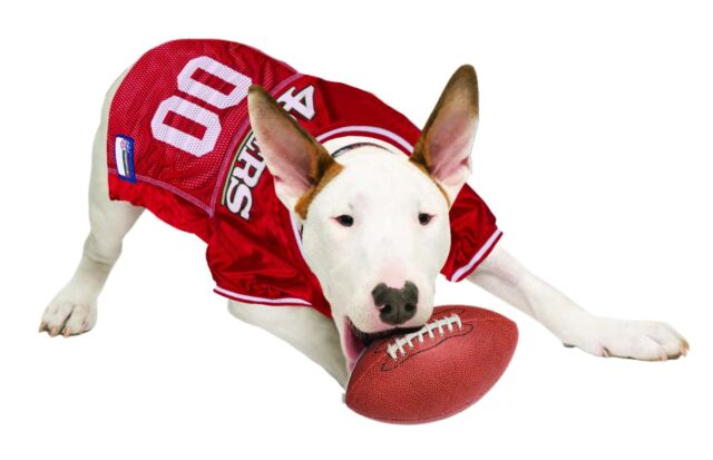new style 39d6e d2672 san francisco 49ers dog jersey