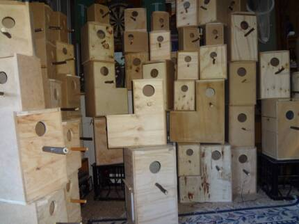 new bird nesting boxes