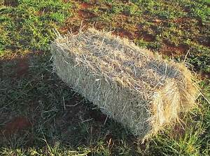 Mulch Hay for Sale Childers Bundaberg Surrounds Preview