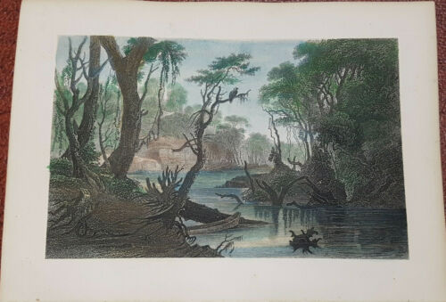 Handcoloured engraving 1854 BACKWOODS RIVER SCENE BAYOU CYPRESS TREES SWAMP