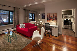 Gorgeous one bedroom fully furnished for monthly rentals