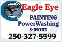 Eagle eye painting