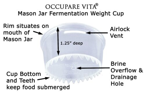 6 Mason Jar Plastic (not glass) FERMENTATION WEIGHTS Keep Food Submerged