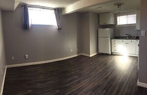 Central South Edmonton Basement Suite - util & laundry inc
