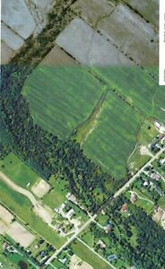 47.93 Acres for Sale