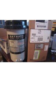 Hayward cartridge with filter
