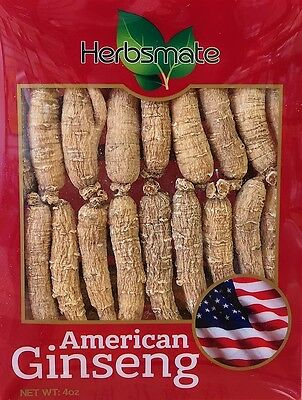 Hand-selected A Grade American Ginseng Root Small Thin Short Size (4 Oz. Box)