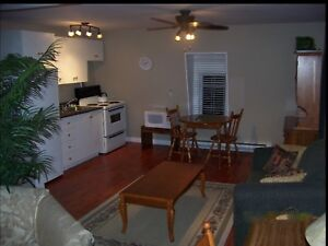 Furnished Downtown (TV, Internet, Parking included)