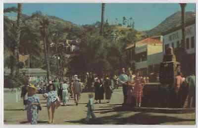 Santa Catalina Island Ca California Avalon Avenida La Crescenta Chrome Postcard