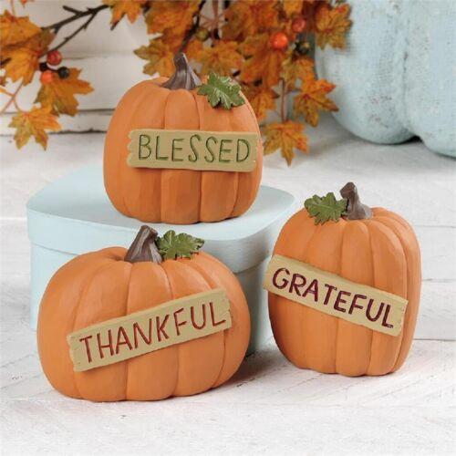 Blossom Bucket Set of 3 Thankful/Grateful/Blessed Pumpkins