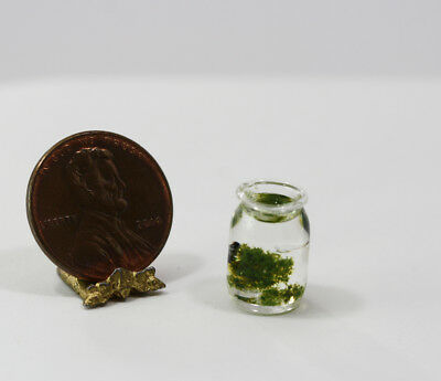 Dollhouse Miniature Artisan Tadpole in a Glass Jar by Philip Grenyer