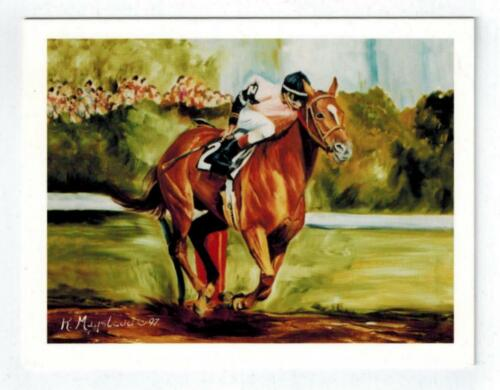New Brown Racehorse & Jockey Notecard Set 12 Note Cards By Ruth Maystead RHOS-4
