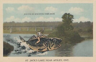 APSLEY , Ontario , Canada , 1930s ; Jack's Lake #3, used for sale  Shipping to Canada