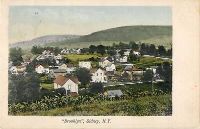 "A Bird's Eye View Of ""Brooklyn"", Sidney, New York NY 1908"