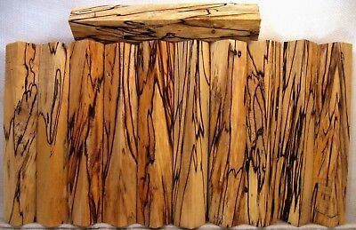 Spalted MAPLE WOOD Lathe TURNING PEN BLANKS Crazy Figure Col