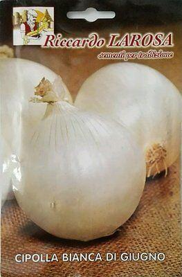 Semi di Cipolla Bianca di Giugno buste sigillate sementi orto frutta Cipolle