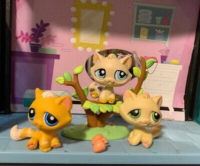 Used, Littlest Pet Shop Tabby Cat  kittens Lot X3 Lps Authentic Green , Blue Eyes for sale  Shipping to Canada