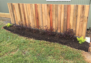 GARDENING! New or maintain the old ones! Port Macquarie Port Macquarie City Preview