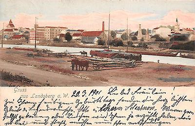 Landsberg an der Warthe / Gorzów, Hafen Boote Postkarte 1901