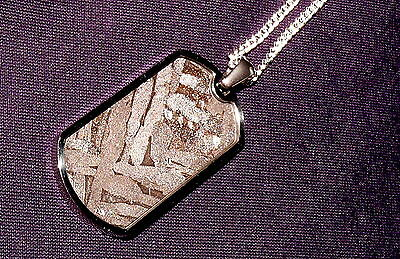 Anhänger Meteorit Pallasit Seymchan  Kette versilbert Heilstein 35x19x2,6mm 8,3g