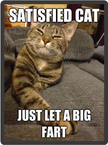 Funny Cat Humor Satisfied Cat Fart Refrigerator Magnet