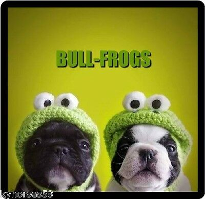 Funny Dog Humor French Bull-Frogs Refrigerator Magnet