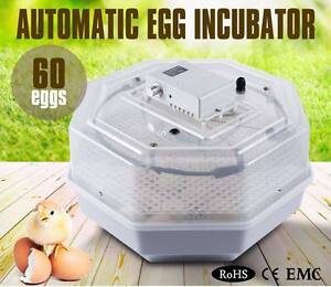 Hatcher 60 Chicken Hen Bird Poultry Egg Automatic Incubator Brisbane City Brisbane North West Preview