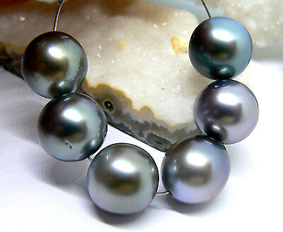 6 RARE METALLIC SILVER BLACK ROBERT WAN TAHITIAN SOUTH SEA PEARLS 10mm AAA