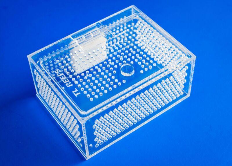 TL Reefs Mushroom Coral Acclimation Box
