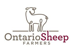 Sheep Meeting- New Producers Welcome!