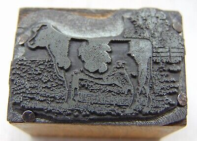 Printing Letterpress Printers Block Cow In A Pasture