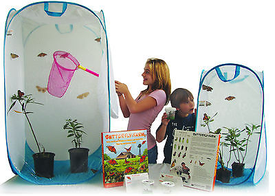 Educational Science Monarch Butterfly and Milkweed Plant Growing  Kit (MGK200) ()
