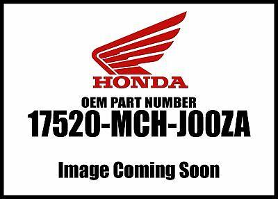 Honda Tank  Fuel Type1 17520-MCH-J00ZA New OEM