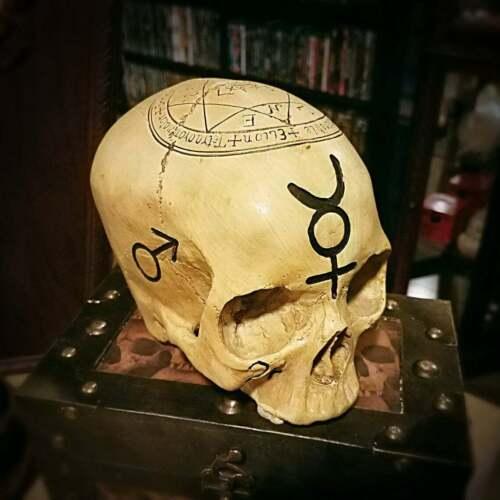 Alchemy Skull, Real Human Skull Replica, Pentagram Skull, Astrology Skull