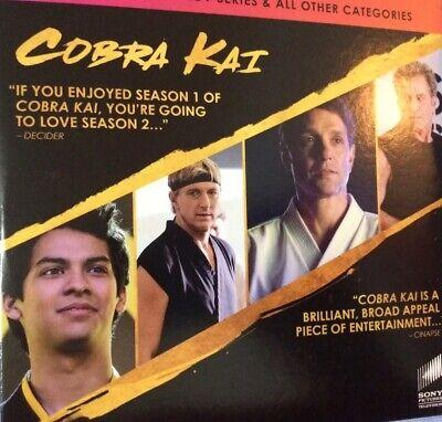Cobra Kai & Black Monday EMMY FYC Screener DVD TV Show Showtime 2 Best