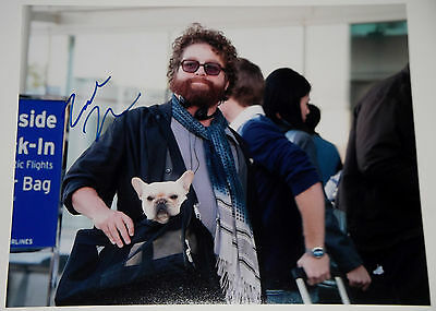 Zach Galifianakis Signed 11X14 Photo Due Date Ethan Tremblay Dog In Carrier  Coa