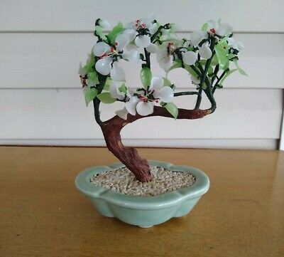 Other Bonsai Tree