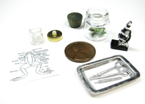 1:12 MINIATURE Dollhouse Laboratory Chemistry Biology FROG DISSECTION Dissecting