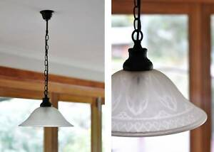 Classic/Traditional Etched Glass Shade Pendant Light