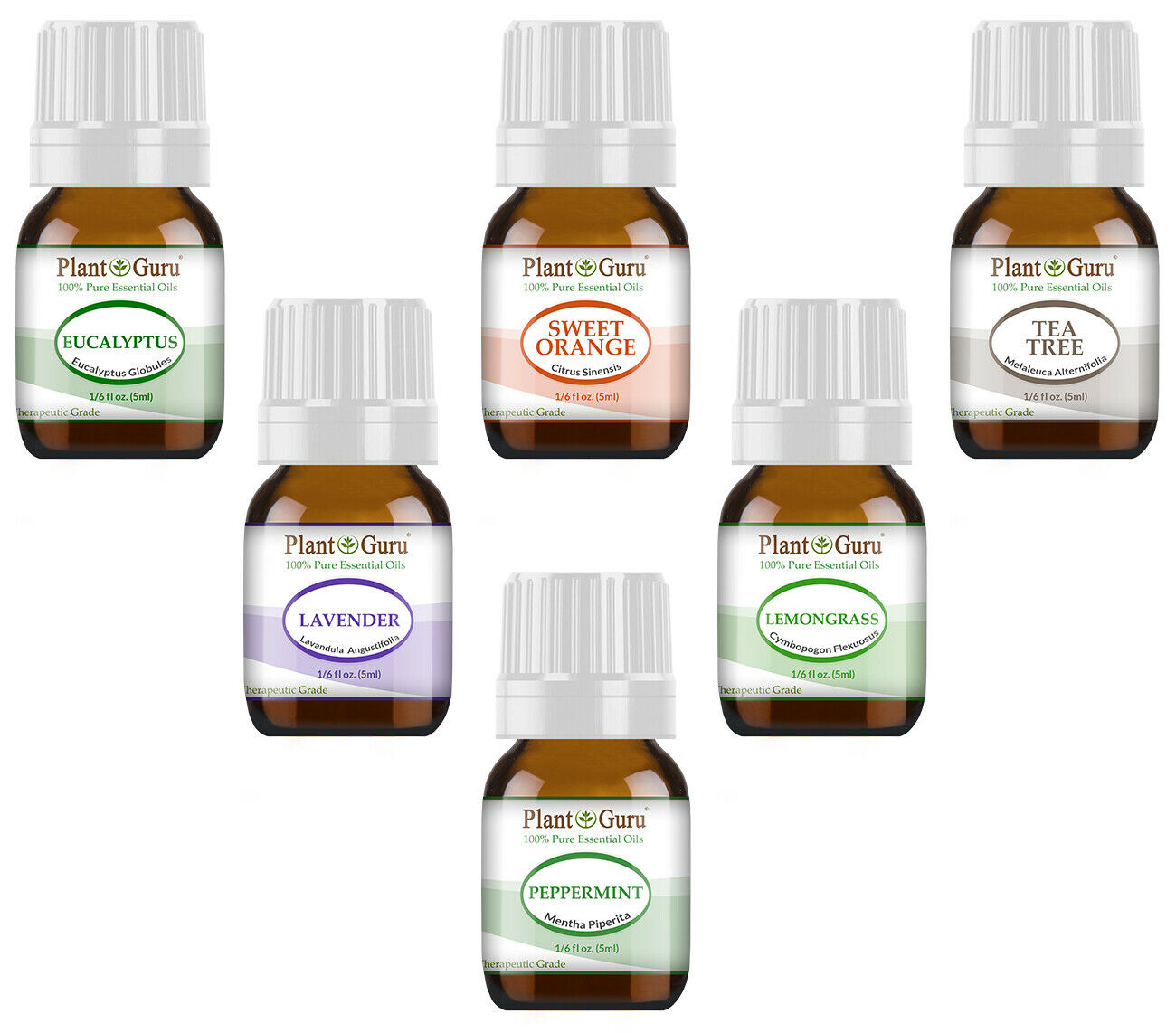 Essential Oil Set Gift Kit  6 - 5 ml. 100% Pure Therapeutic