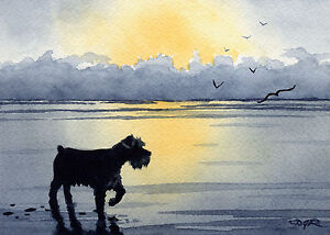 MINIATURE-SCHNAUZER-Dog-Watercolor-8-x-10-ART-Print-Signed-by-Artist-DJR