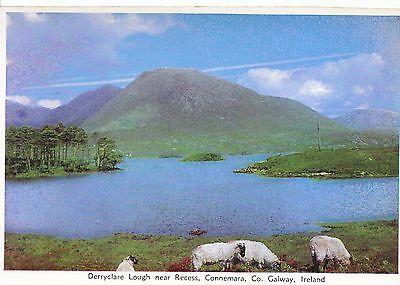Ireland Postcard - Derryclare Lough near Recess - Connemara - Co. Galway  LSL841