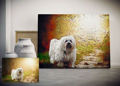 Custom Pet Portrait Digital, Van Gogh Painting, Personalized Gift, RISK - Vans Personalized