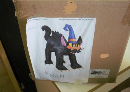 Black Cat Airblown