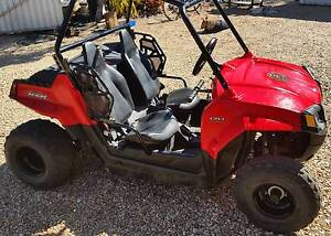 rzr 170 buggy for sale Sapphire Inverell Area Preview